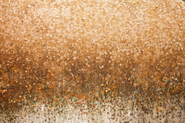 Gold leaf on the wall background.