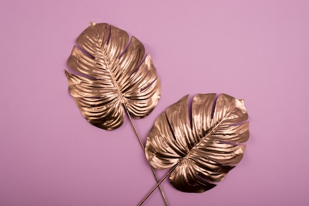 Золотые листья монстеры. вид сверху роскошных позолоченных тропических листьев. Premium Фотографии