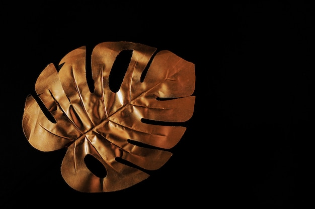 Gold painted exotic monstera leaf on black background. creative frame with copy space for text