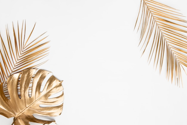 Gold painted monstera and date palm branches on white background isolated