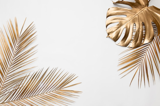 Gold painted monstera and date palm branches on white background
