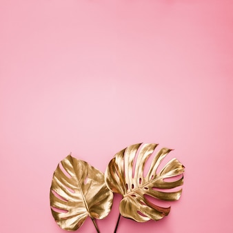 Gold painted tropical monstera leaves on abstract pastel pink background