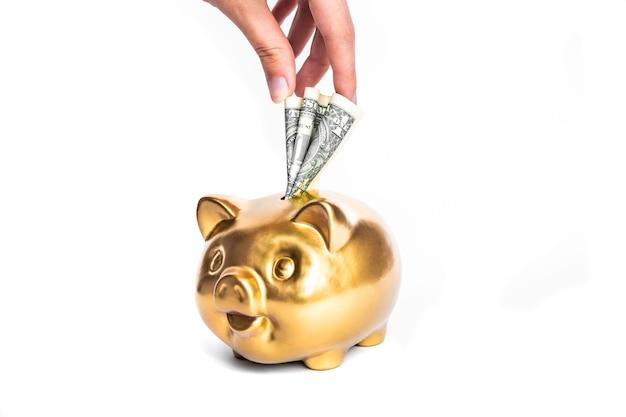 금 돼지 저금통과 달러 절연-돈 개념을 절약. 비즈니스, 금융 개념.