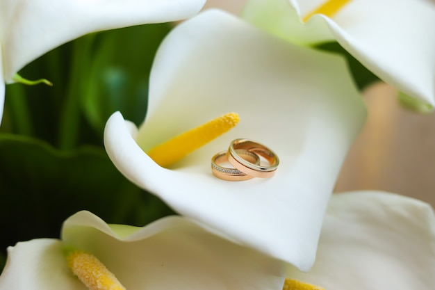 Gold rings and callas.