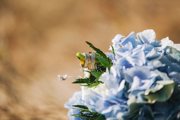 Gold wedding rings on bouquet with beautiful hydrangea. copy space