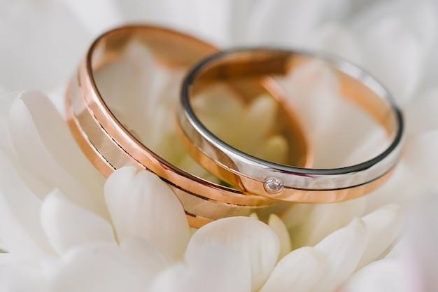 Золотые обручальные кольца на фоне белых лепестков крупным планом