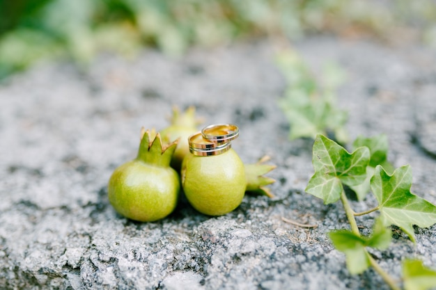 Золотые обручальные кольца на маленькие плоды граната на размытом фоне