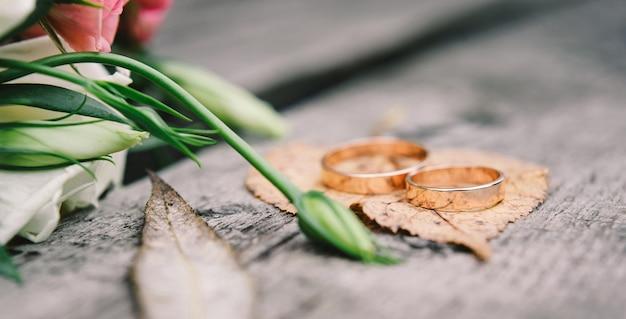 Gold wedding rings on orange