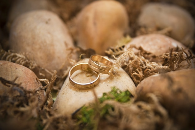 Gold wedding rings on the rocks of a beach.