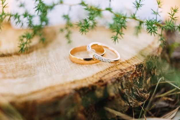 Золотые обручальные кольца с драгоценными камнями на пне на фоне веток зелени