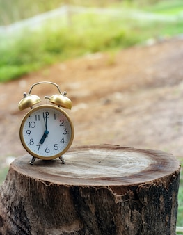 Golden alarm clock on wooden with blurred nature lighting background