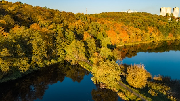 Golden autumn, aerial view of forest with yellow trees and lake landscape from above