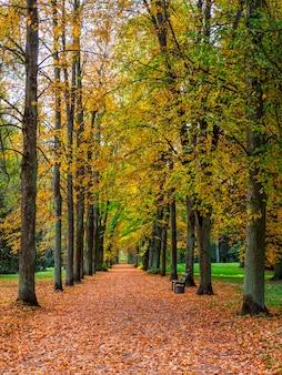 パブロフスクの黄金の秋の路地。ロシア。