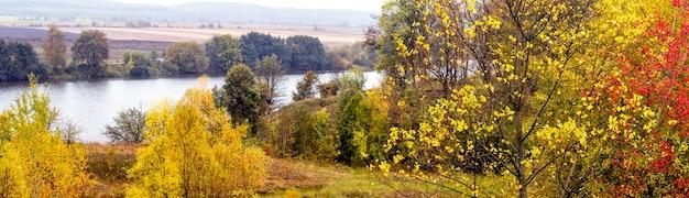 黄金の秋。川沿いの色とりどりの植物、パノラマの秋の風景