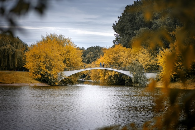 Golden autumn and bridge over the lake in the public park