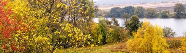 黄金の秋。秋の川沿いの色とりどりの木々、パノラマ