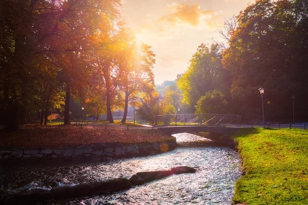 有名なミュンヘンで10月の黄金の秋秋リラックス場所englishgartenミュンヘンバイエルンドイツ