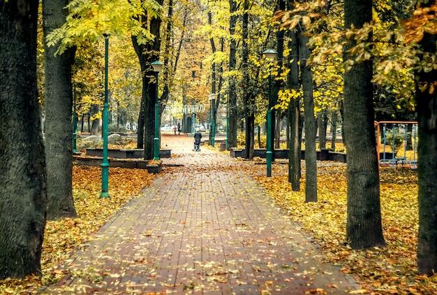 都市公園における黄金色の秋。公園の大通りに黄色の葉。人々は公園を歩いています