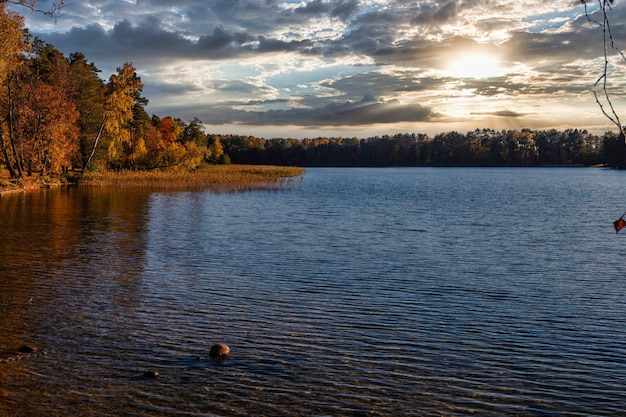 Золотая осень на берегу озера - осенний пейзаж возле озера