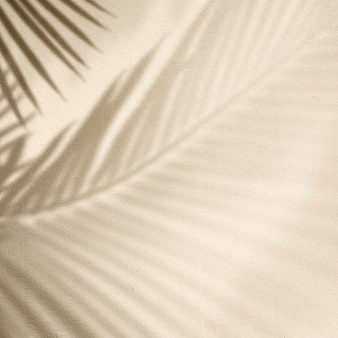 Golden background with palm tree