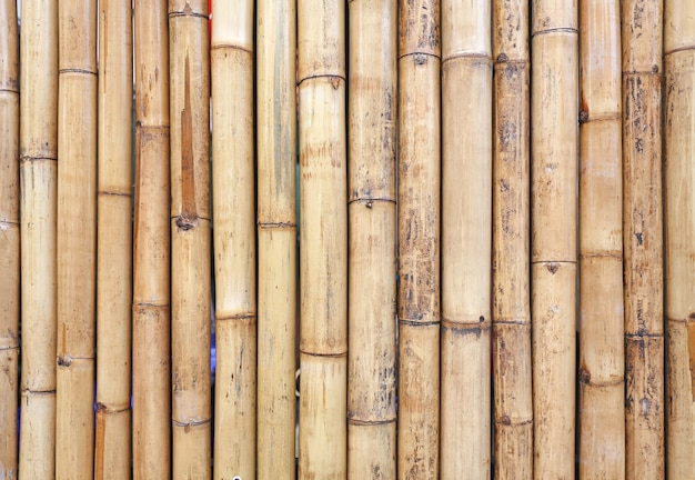 Golden bamboo fence background