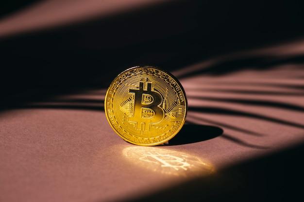 황금 비트코인 암호 화폐 개념