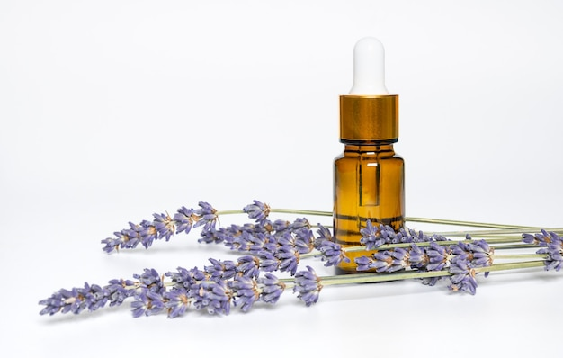 Golden bottle with aroma oil and lavender flowers on white background.