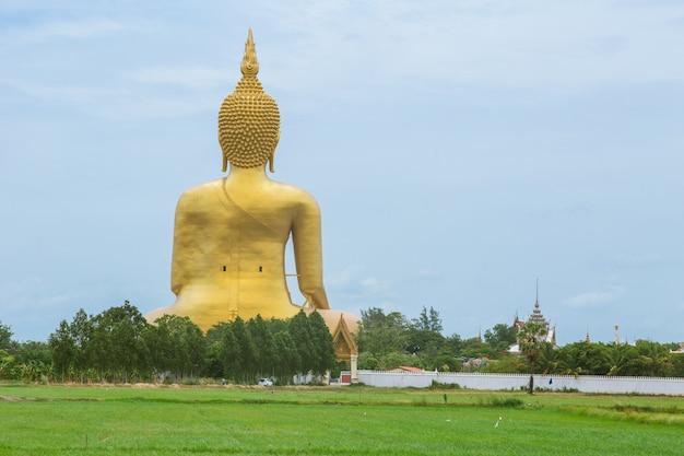 Golden buddha in countryside.