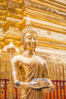 Золотой будда в храме чианг май азия таиланд