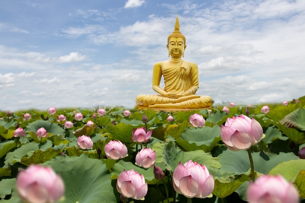 Golden buddha with lotus flowers