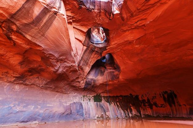 Золотой собор в неоновом каньоне, национальный парк эскаланте, штат юта