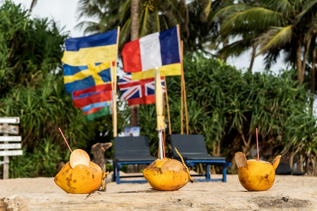 Golden coconuts on the beach with flags of different countries