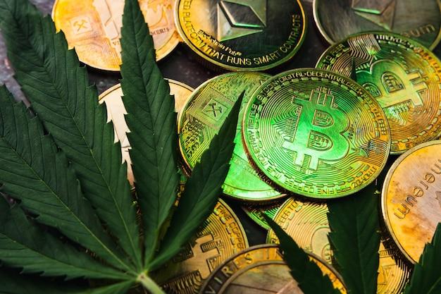 暗号通貨のシンボルと大麻の葉が付いた黄金のコイン。
