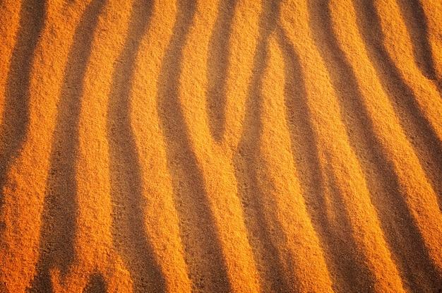 背景として日没時の黄金の砂漠の砂