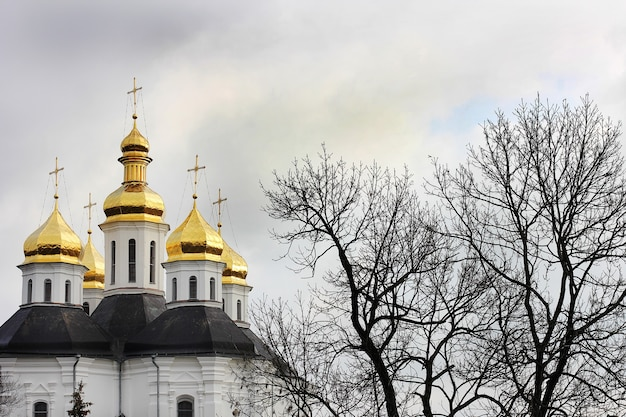 Golden domes on the church in the winter park