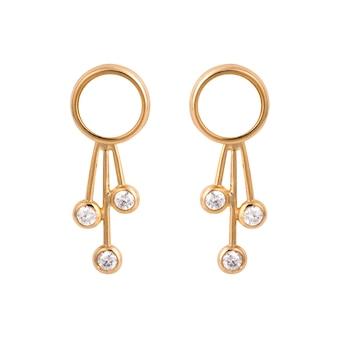 白い表面に分離された宝石と黄金のイヤリング