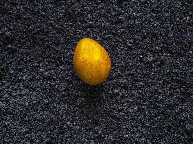 Golden egg on the ground. toning.