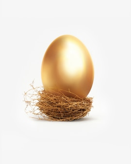 巣の中の黄金の卵