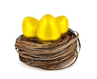 Golden eggs in nest, investment and financial concept, 3D rendering