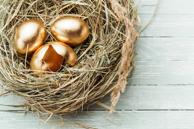 Golden eggs in the nest, one broken egg