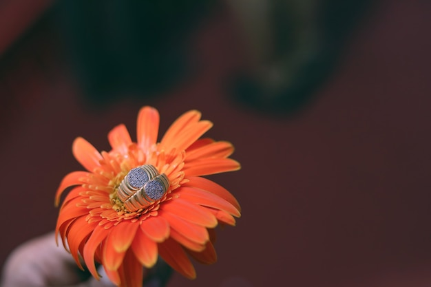 Golden engagement ring on flower