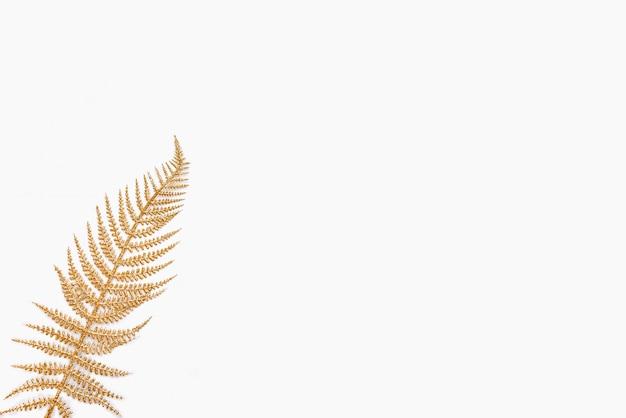 Golden fern leaf on white. copy space.