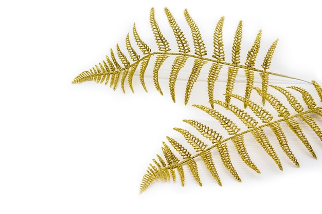 Golden fern leaves, decoration ornamental branch on light background.