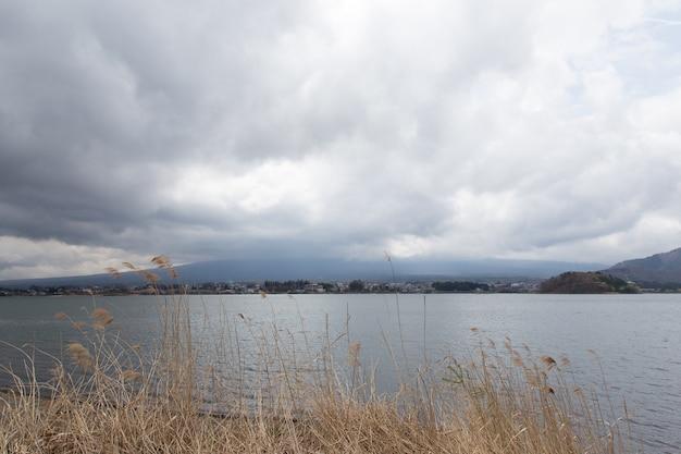 Golden field at lake kawaguchiko with cloudy before raining