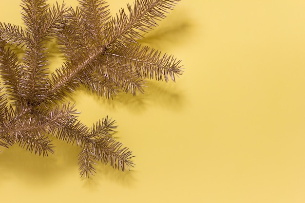 Golden fir tree evergreen branch on yellow surface. photo with copy blank space.