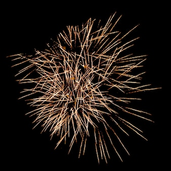 Golden fireworks in black sky
