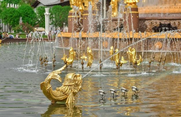 공원에 있는 사람들의 우정의 샘에 있는 황금 물고기