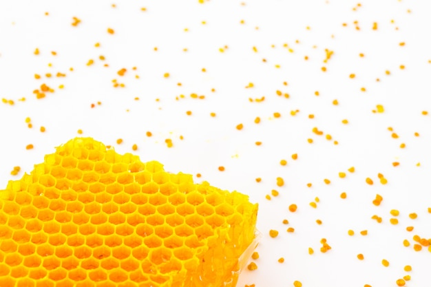Golden honeycomb and yellow pollen on a white space