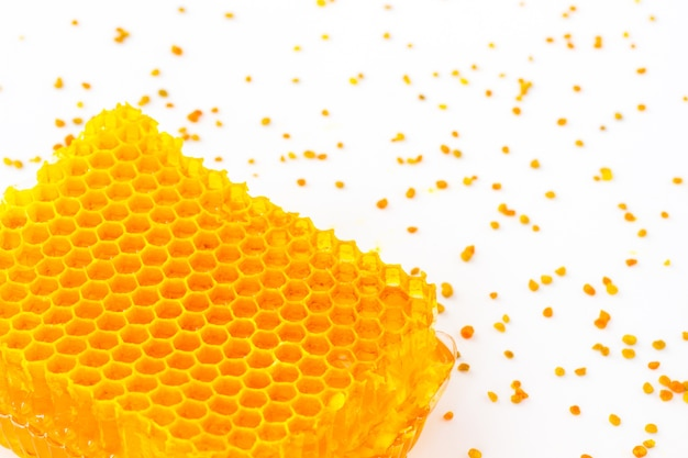 Golden honeycomb and yellow pollen on a white