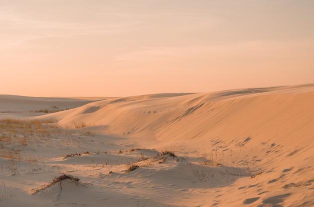 砂丘の黄金の太陽黄金の太陽